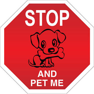_STOP_AND_PET_ME__AUTOMAGNEETTI