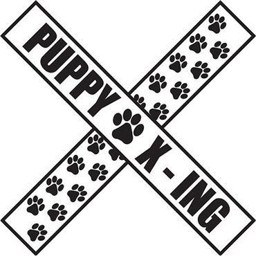 _PUPPY_X_ING__AUTOMAGNEETTI