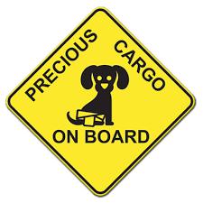 _PRECIOUS_CARGO_ON_BOARD__AUTOMAGNEETTI