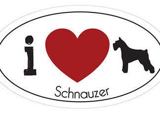 _I_LOVE_SCHNAUZER__AUTOMAGNEETTI