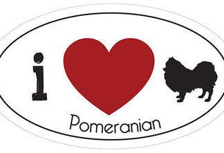 _I_LOVE_POMERIAN__AUTOMAGNEETTI