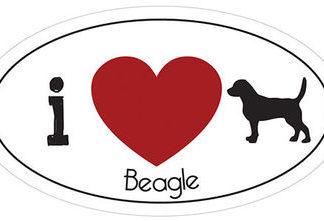 _I_LOVE_BEAGLE__AUTOMAGNEETTI
