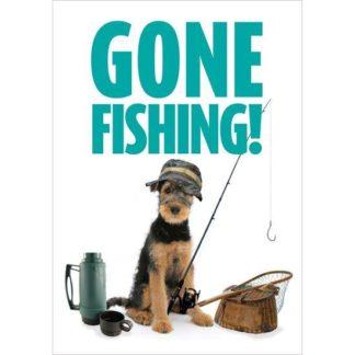 KYLTTI_GONE_FISHING